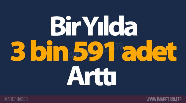 BİR YILDA 3BİN 591 ADET ARTTI