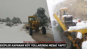 Karaman'da kapanan köy yolları açıldı