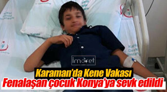 Karaman'da kene vakası, Konya'ya sevk edildi