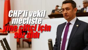 CHP'li Ünver yine çiftçiler için söz aldı