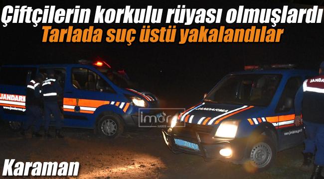 Jandarma tarlada suç üstü yakaladı