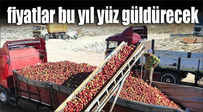 Karaman'da ıskarta fiyatları bu yıl yüz güldürecek