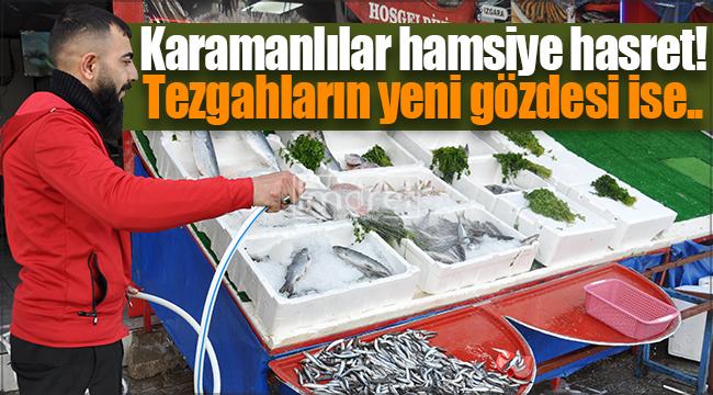 Karaman'da balıkseverler, hamsinin yerini onlarla doldurdu..