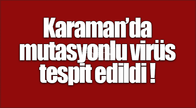 Karaman'da mutasyonlu virüs tespit edildi!