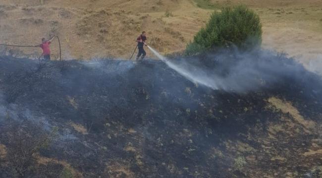 Bingöl'de anız yangını ormana sıçramadan söndürüldü