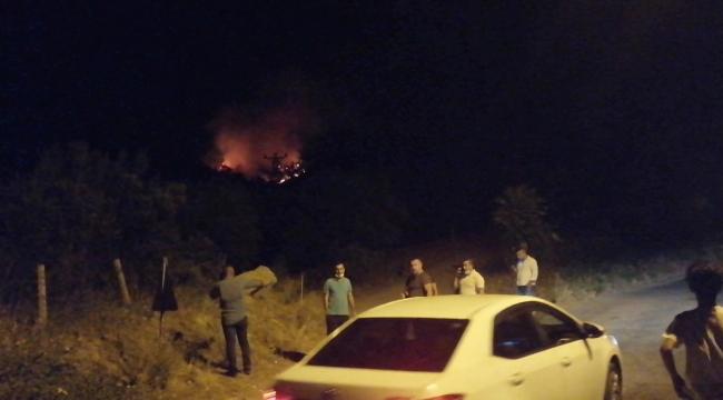 Manisa'da orman yangını başladı