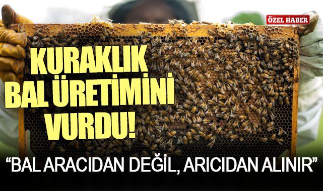 Karaman'da yaşanan kuraklık bal üretimini vurdu!